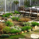 طراحی باغچه در منزل