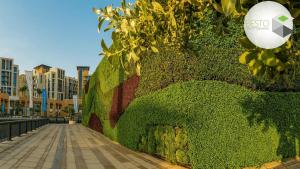 دیوار سبز چیست؟
