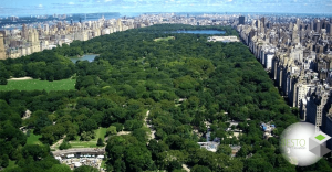 قوانین فضای سبز شهرها